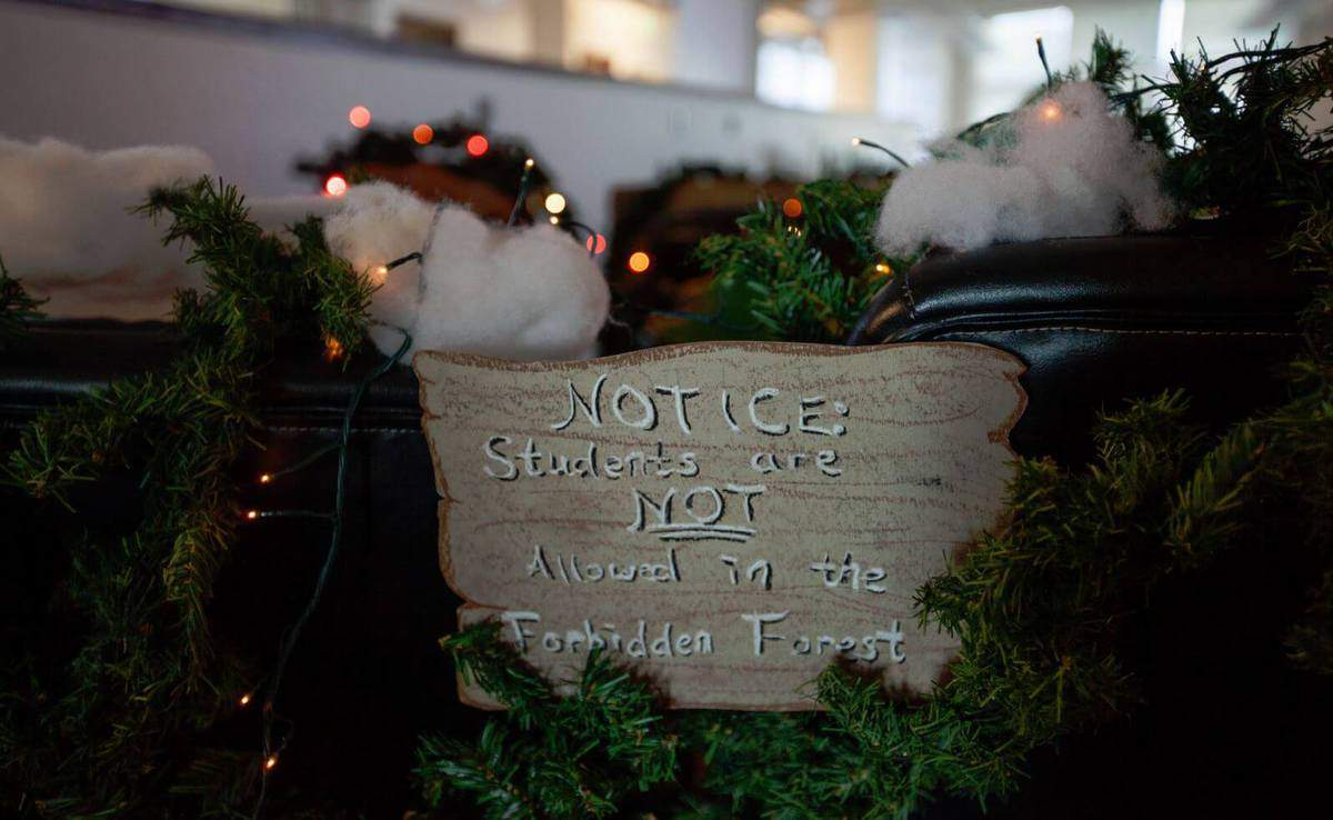 office decoration ideas for christmas. Students Not Allowed In Forbidden Forest Office Decoration Ideas For Christmas